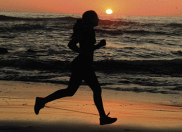 A jogger runs on the beach on the cover of the Journal of Experimental Biology.